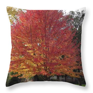 Magnificent Maple Throw Pillow by Bill Woodstock
