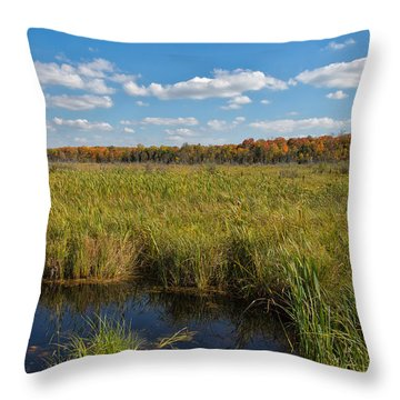 Magnificent Minnesota Marshland Throw Pillow