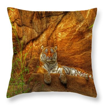 Magnificent Tiger Resting Throw Pillow by Andy Lawless
