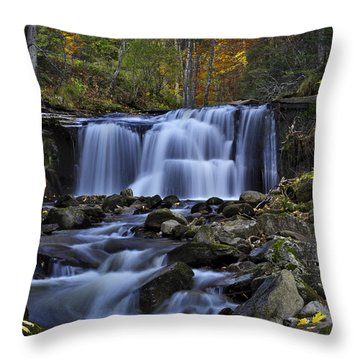 Magnificent Waterfall Throw Pillow