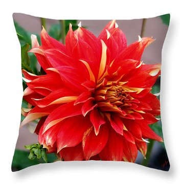 Throw Pillow featuring the photograph Magnifique by Jeanette C Landstrom