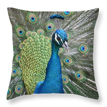 Magnifique Throw Pillow by Judith Morris