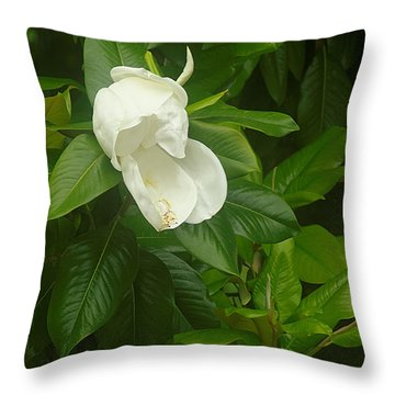 Throw Pillow featuring the photograph Magnolia 1 by Suzanne Powers