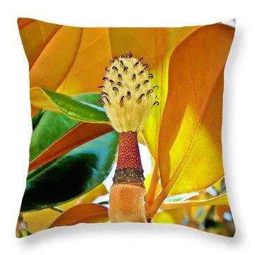 Throw Pillow featuring the photograph Magnolia Flower by Olga Hamilton