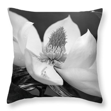 Magnolia In May - Black And White Throw Pillow