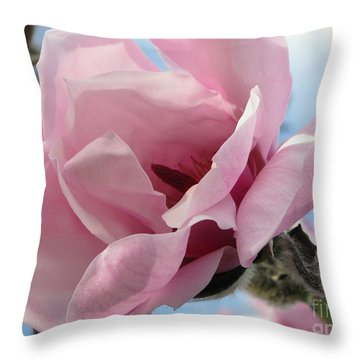 Magnolia In Spring Throw Pillow by Jola Martysz