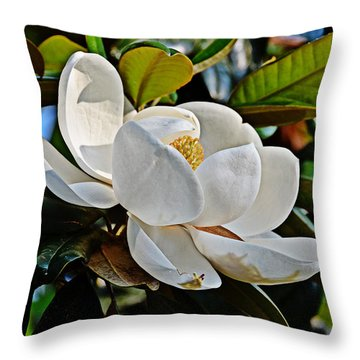 Throw Pillow featuring the photograph Magnolia Moment by Linda Brown