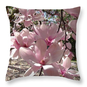 Magnolia On A Sunny Day Throw Pillow
