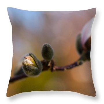 Magnolia Season II Throw Pillow by Mary  Smyth