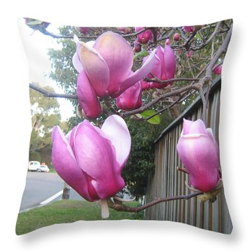 Throw Pillow featuring the photograph Magnolias In Bloom by Leanne Seymour