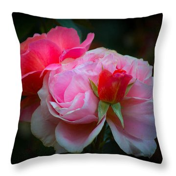Throw Pillow featuring the photograph Maiden Mother Crone by Patricia Babbitt