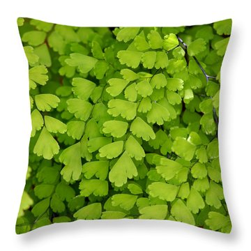 Maidenhair Fern Throw Pillow by Art Block Collections
