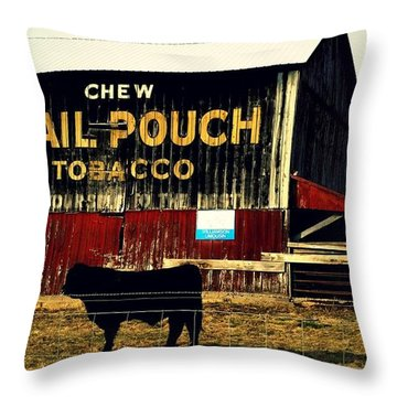 Mail Pouch-4 Throw Pillow