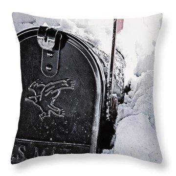 Mailbox Buried In Snow Throw Pillow by Birgit Tyrrell