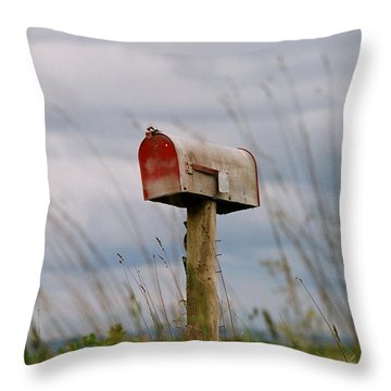 Mailbox Throw Pillow