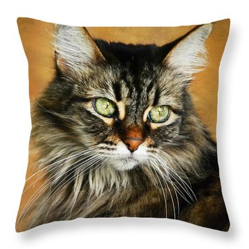 Maine Coon In Topaz Throw Pillow by Fraida Gutovich