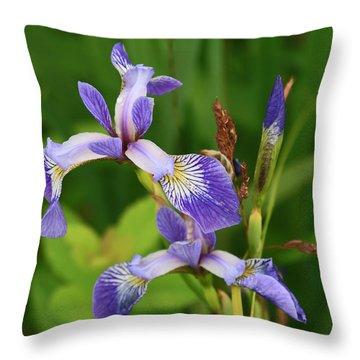 Maine Wild Iris Throw Pillow