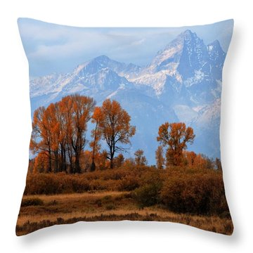 Majestic Backdrop Throw Pillow