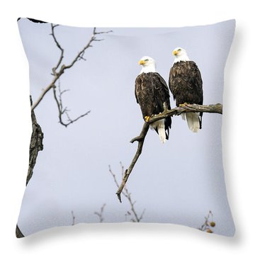 Majestic Beauty 1 Throw Pillow by David Lester