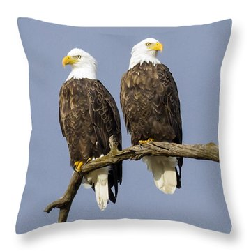 Majestic Beauty  6 Throw Pillow by David Lester