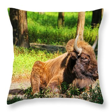 Majestic Bison Throw Pillow by Mariola Bitner