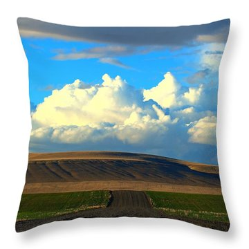 Throw Pillow featuring the photograph Majestic Clouds by Lynn Hopwood