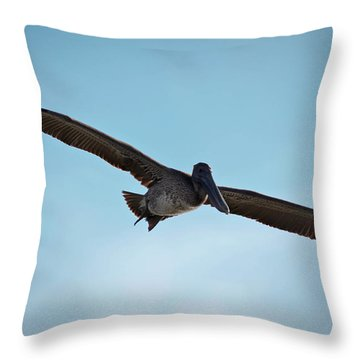Majestic Flight Throw Pillow