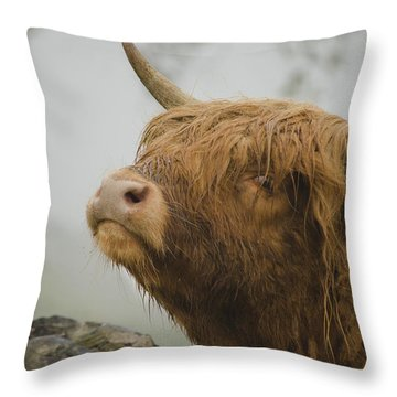 Majestic Highland Cow Throw Pillow
