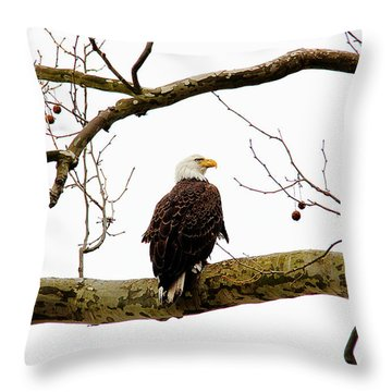 Throw Pillow featuring the photograph Majestic I by Trina  Ansel