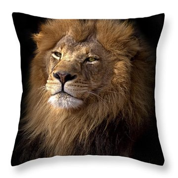 Majestic In Color Throw Pillow