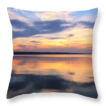 Majestic Mirror Throw Pillow by Rachel Cohen