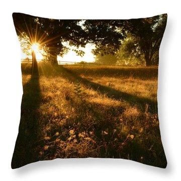 Majestic Oaks Sunrise Throw Pillow