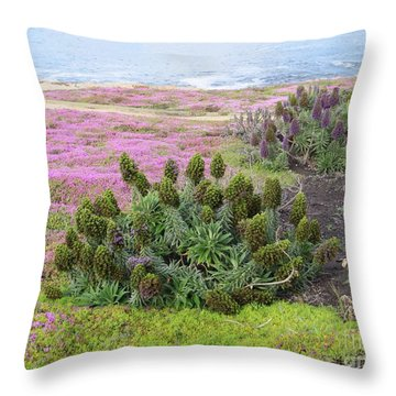 Majestic Shoreline Throw Pillow