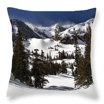 Majestic Throw Pillow by Steven Reed