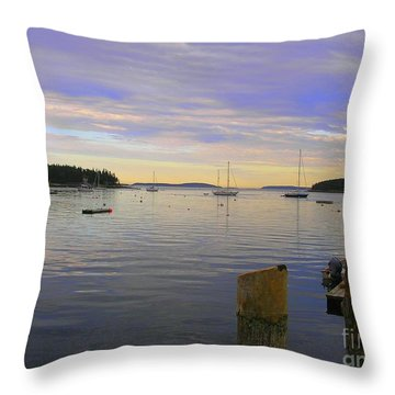Majestic Sunrise Throw Pillow by Elizabeth Dow