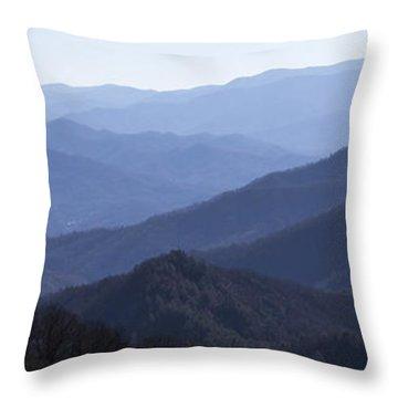 Majesty - Panoramic Throw Pillow