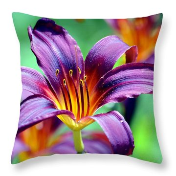Throw Pillow featuring the photograph Majesty by Deena Stoddard