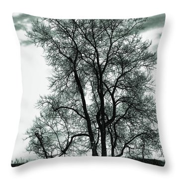 Throw Pillow featuring the photograph Majesty by Lauren Radke