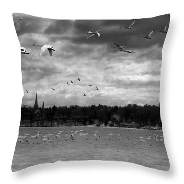 Major Migration Throw Pillow