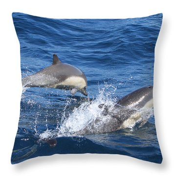 Make A Splash Throw Pillow by Shoal Hollingsworth