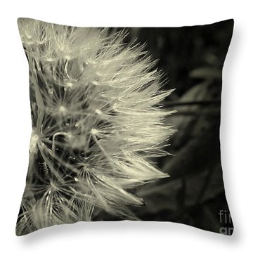 Throw Pillow featuring the photograph Make A Wish by Clare Bevan