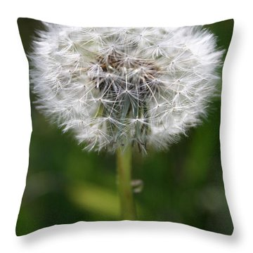 Throw Pillow featuring the photograph Make A Wish by Jeanette French