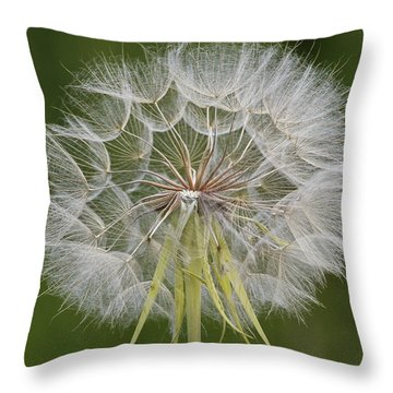 Make A Wish Throw Pillow by Lee Kirchhevel