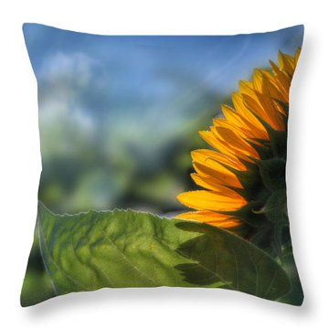 Make Each Day Count Throw Pillow by Lori Deiter
