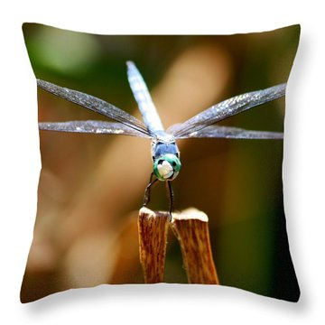 Throw Pillow featuring the photograph Made Ya Smile by Patrick Witz