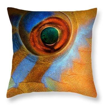 Surveillance Throw Pillows