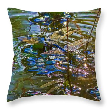 Throw Pillow featuring the photograph Making A Deposit For The Future by Gary Holmes