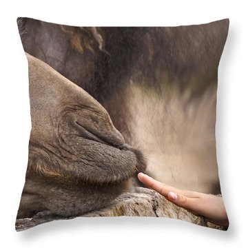 Throw Pillow featuring the photograph Making Friends by Inge Riis McDonald