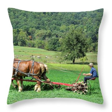Making Hay Throw Pillow by Jeanette Oberholtzer