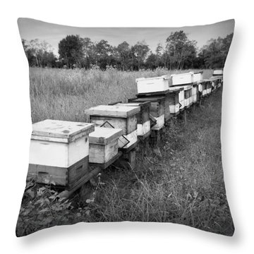 Making Honey II Bw Throw Pillow